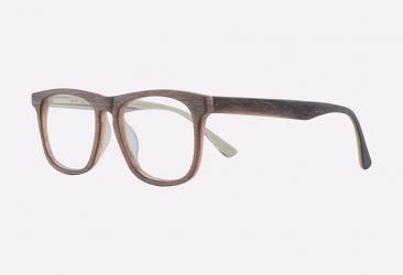 Wayfarer Eyeglasses 5070BROWN