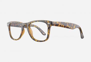 Prescription Glasses p2429demi2