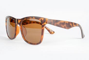 Sunglass Frame Shapes tr0033_c3